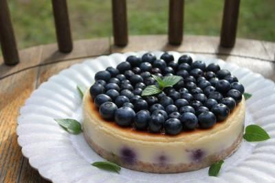 庭の恵み/ブルーベリーチーズケーキ